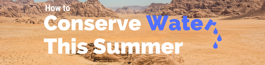 how to conserve water this summer